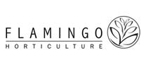 Flamingo Horticulture